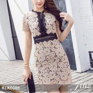 Casual Elegant Lace Dress